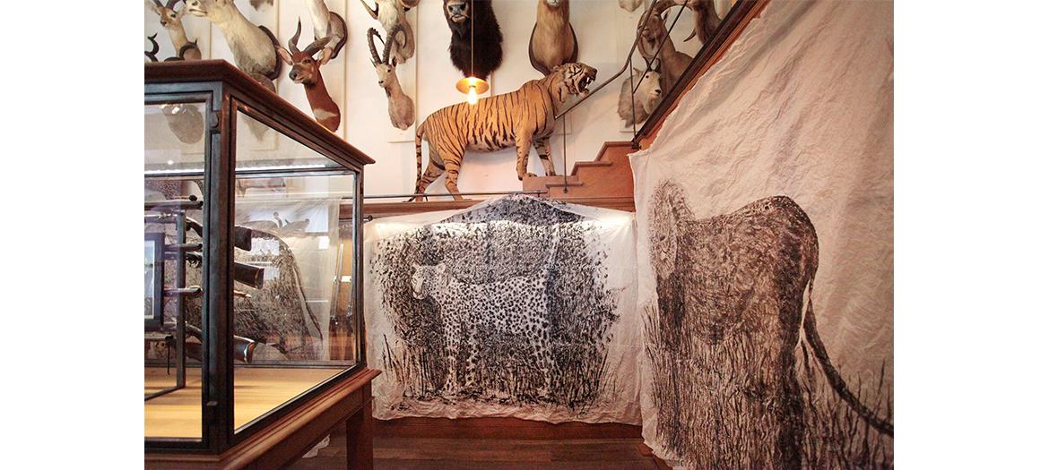 Une des salles de la Maison de la chasse et de la nature