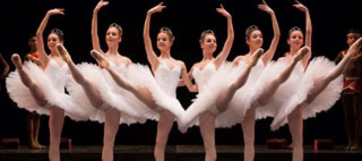Avis Aux Fans De Black Swan 1
