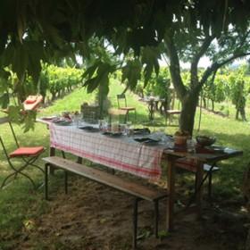 Un Bar Clandestin Dans Les Vignes De Provenceb