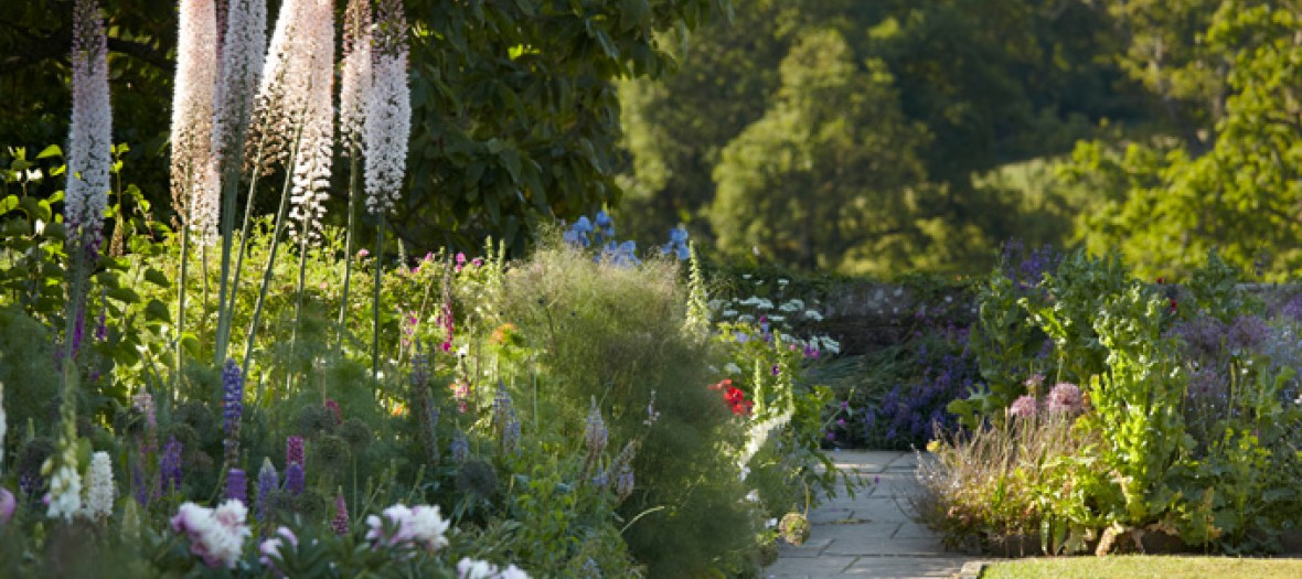 Lovely Break Dans Un Jardin Anglais 680