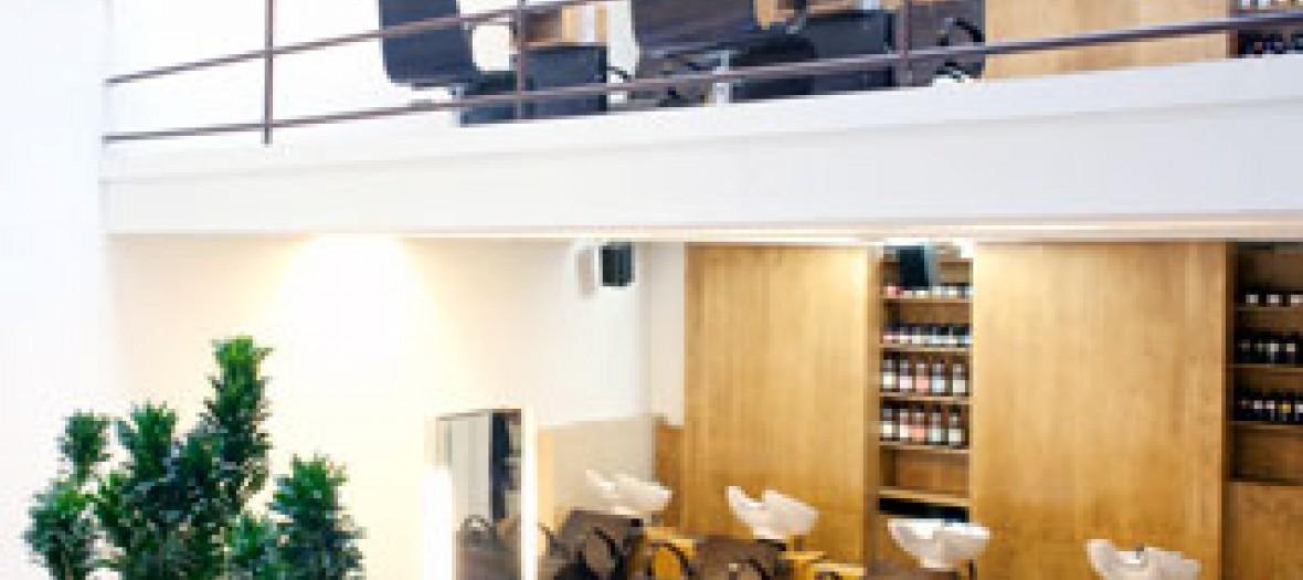 Ion Studio