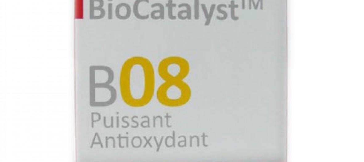 Gelllules Biocatalyst B08