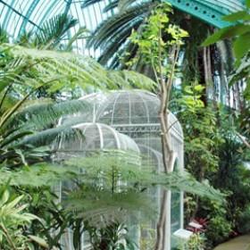 16un Jardin Tropical Comme Si Vous Etiez A Rio Aux Serres D Aute