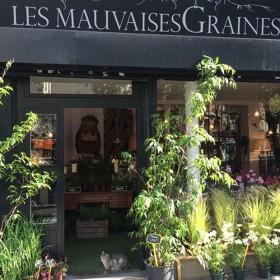Ma Cabane Boulevard Saint Germain Princ