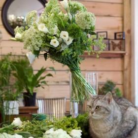 Un Bouquet En Take Away Chez Les Mauvaises Graines