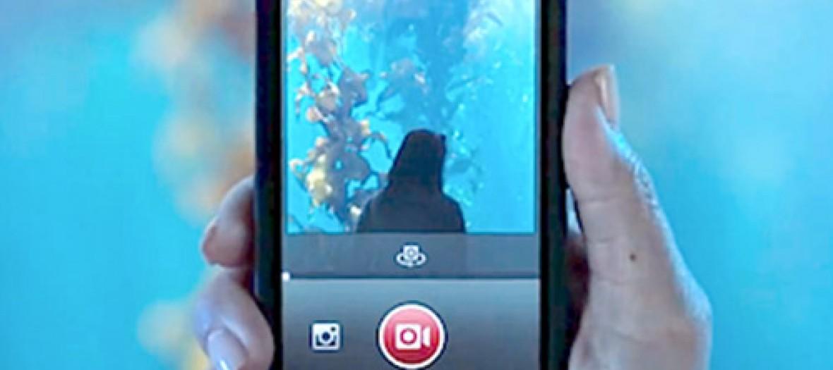 Pour ou contre la vidéo sur Insta ?