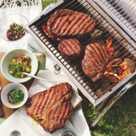 Grilled meats in picnic on a barbecue