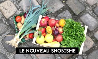 Panier de fruits et legumes bio