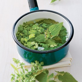 Saucepan with nettle broth