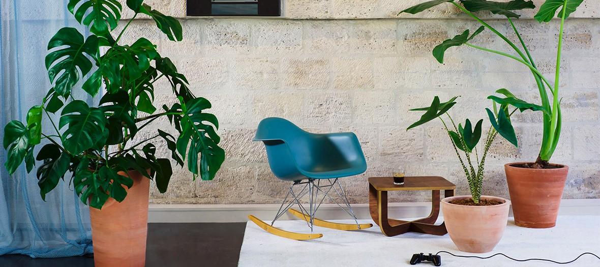 la grande serre des plantes dont on ne s occupe pas pour 29 90 par mois. Black Bedroom Furniture Sets. Home Design Ideas