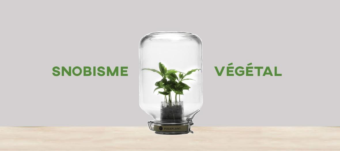 Snobisme Vegetal