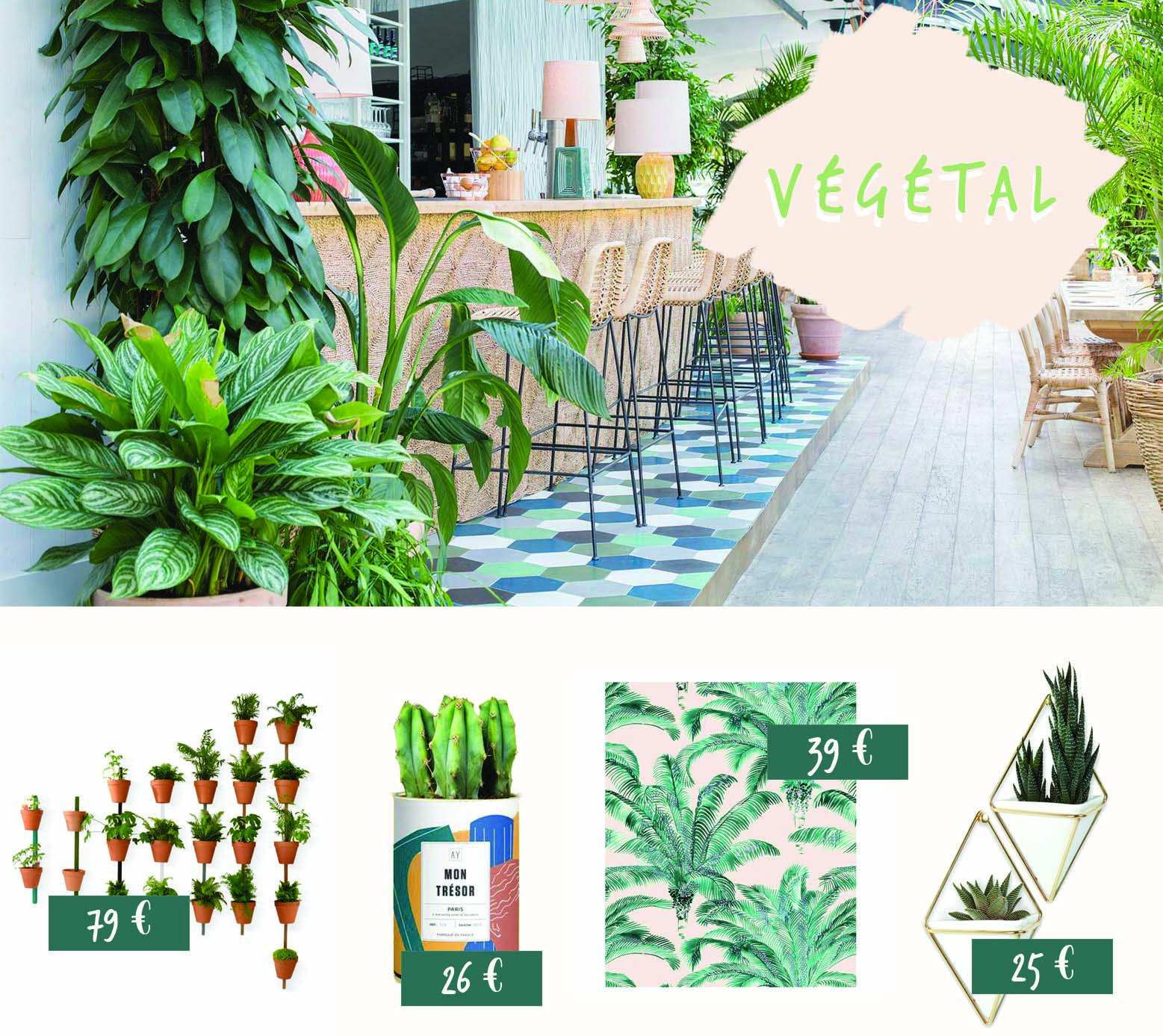 vegetaliser son interieur decoration laura gonzales