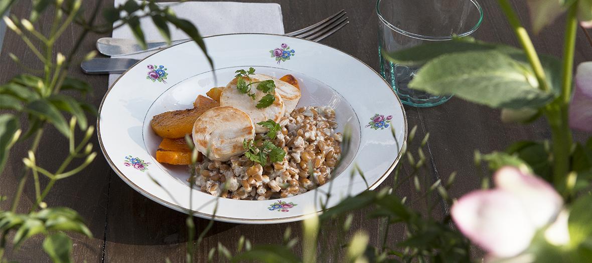 food-terrace-marcelle-restaurant