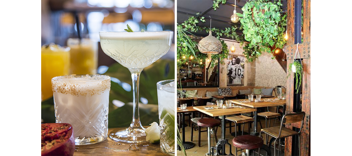 Coco Lulu Cocktails and Urban Jungle Bar decor in Paris
