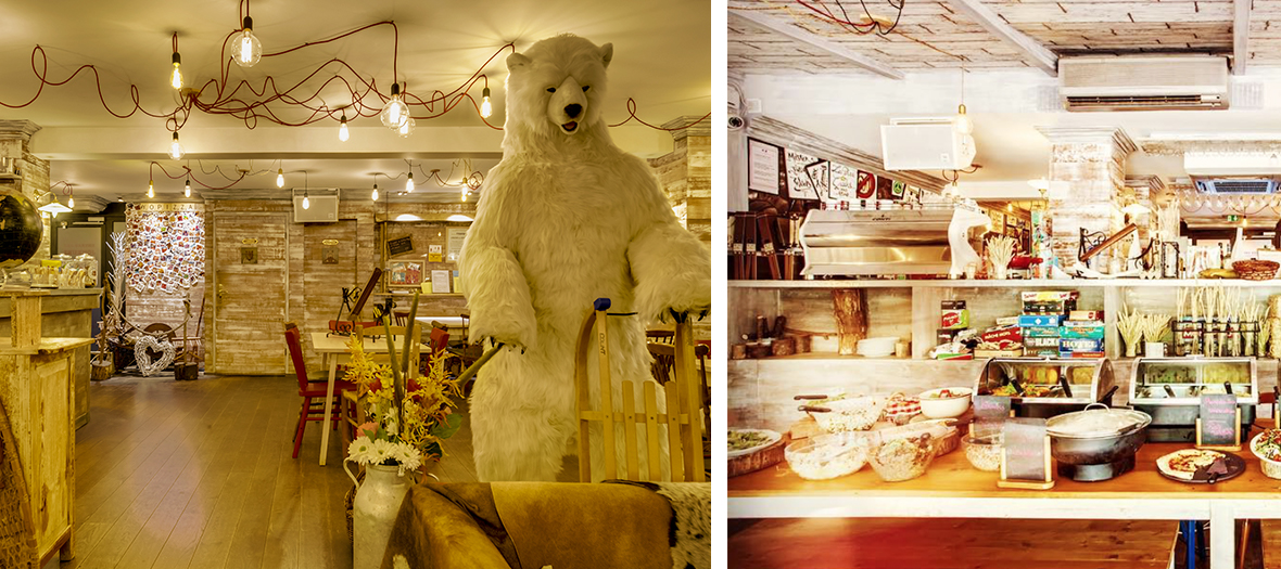 Polar bear et cheese bar