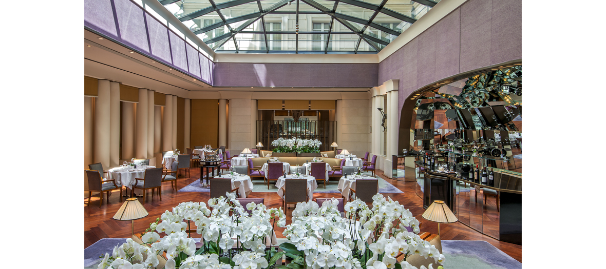 The neo bistrot at the Park Hyatt hotel in Paris