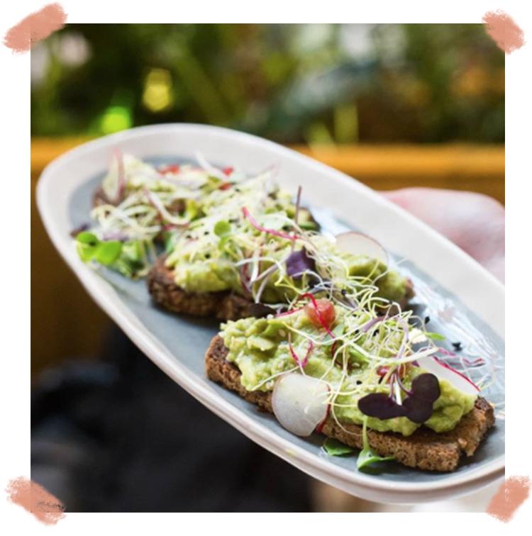 Avocado toast brunch vegan