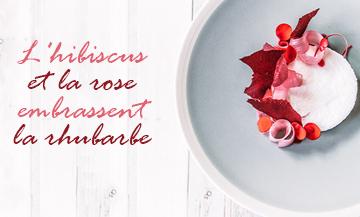 Nuage Rhubarbe