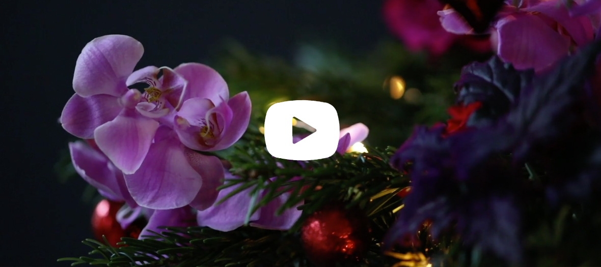 célébrer noël avec des fleurs