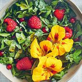 Salade Herbes