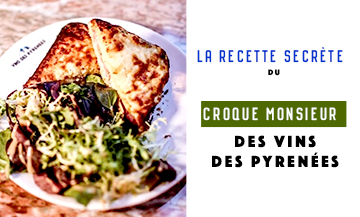 Le Vin des Pyrénées has shared its secret recipe with us !