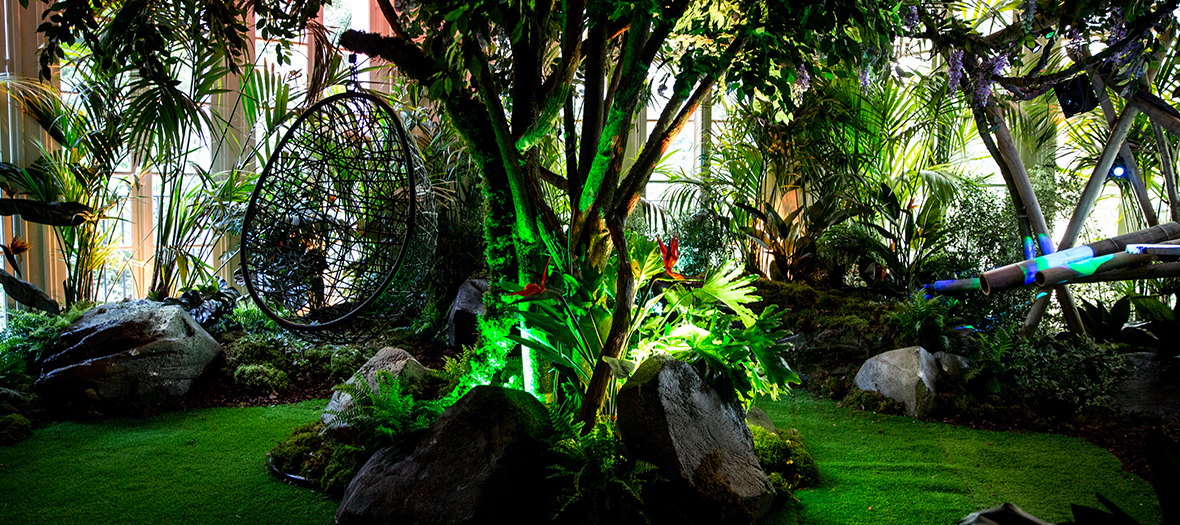 Jungle immersive de la villa extraordinaire