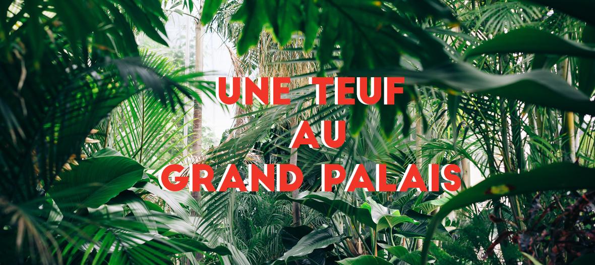 Soiree electro au Grand Palais