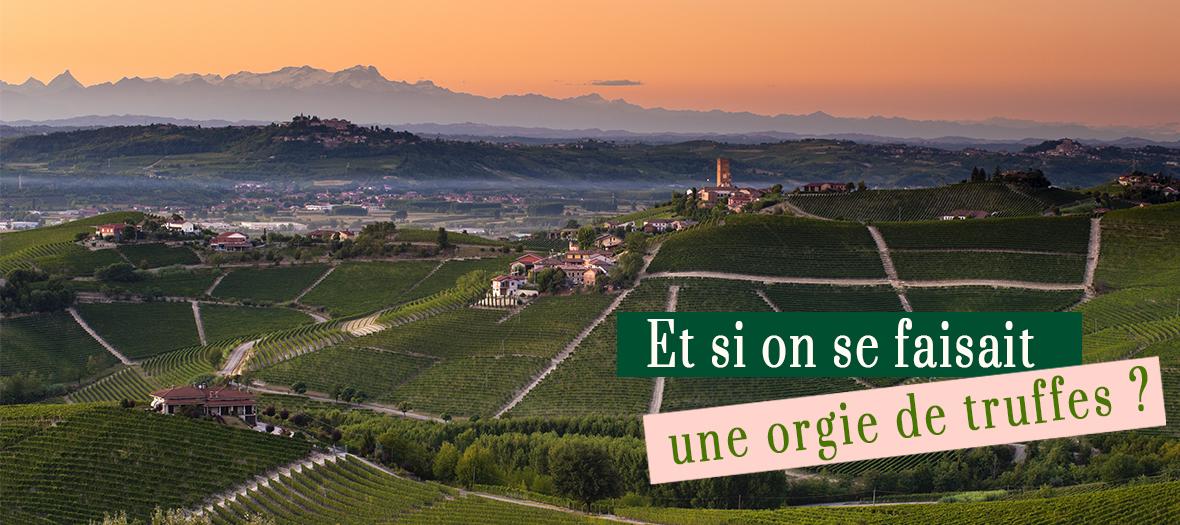 Coucher du soleil sur les vignes du Piemont