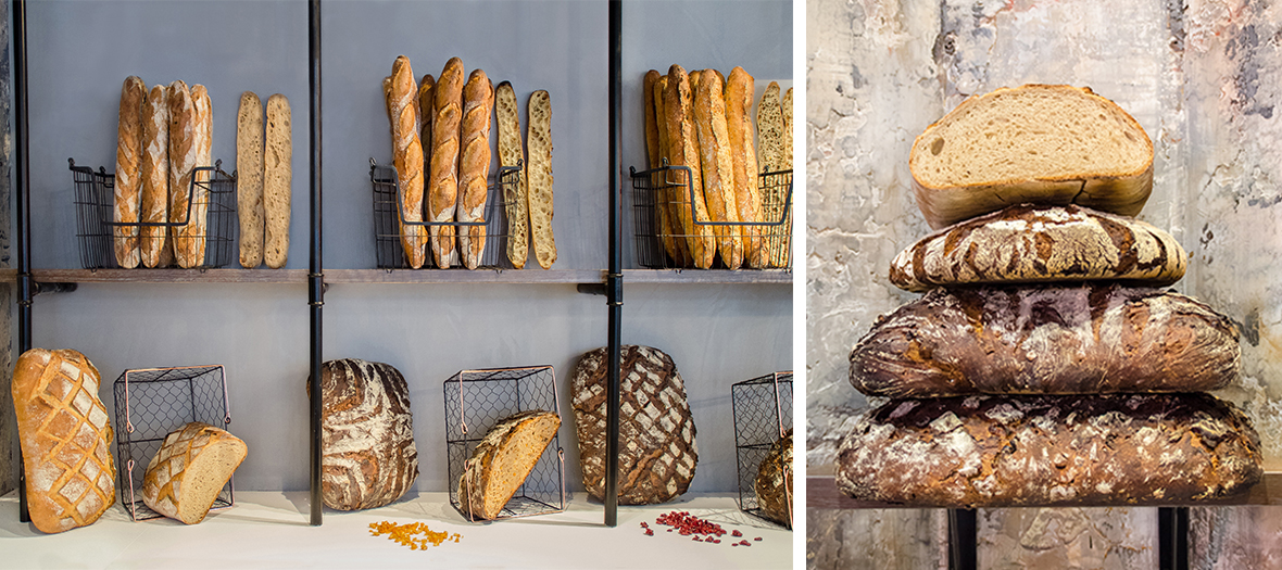 Country breads with hazelnuts and orange peel, cranberry pecan