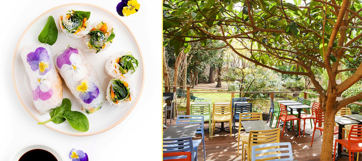 Exki Healthy cantina, spring rolls and terrace of the restaurant in a garden in Paris