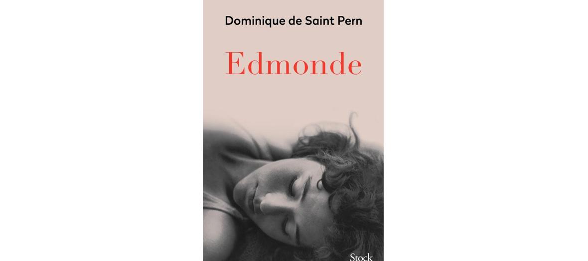 Livre de Dominique de Saint Pern, éditions Stock