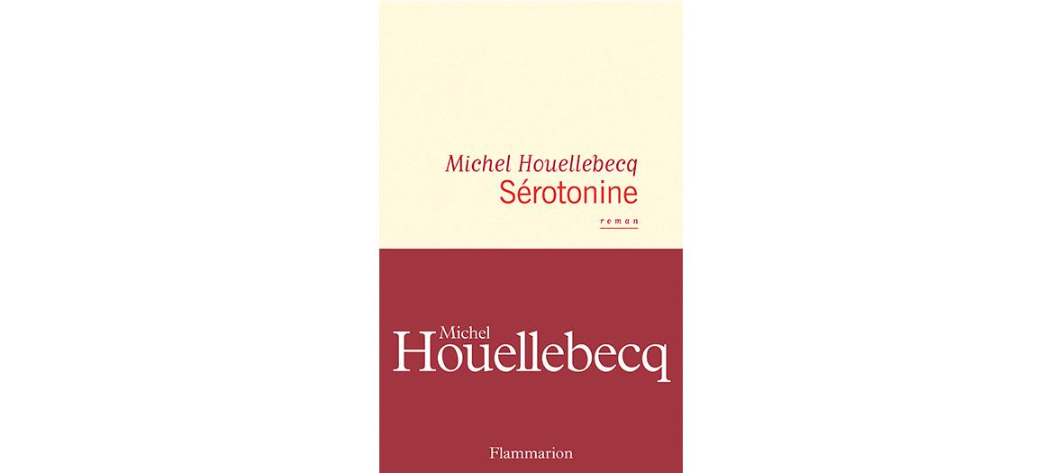 Roman de Michel Houellebecq edition Flammarion