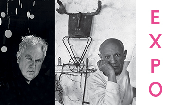 Calder-Picasso: the must-see event exhibition