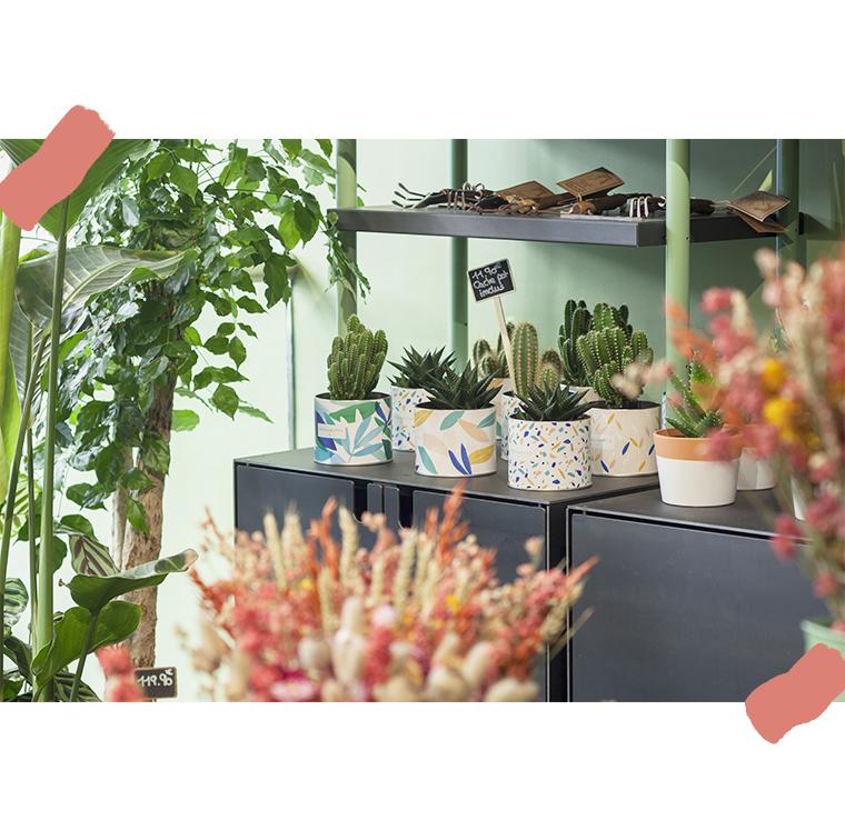 Livraison de fleurs et de plantes