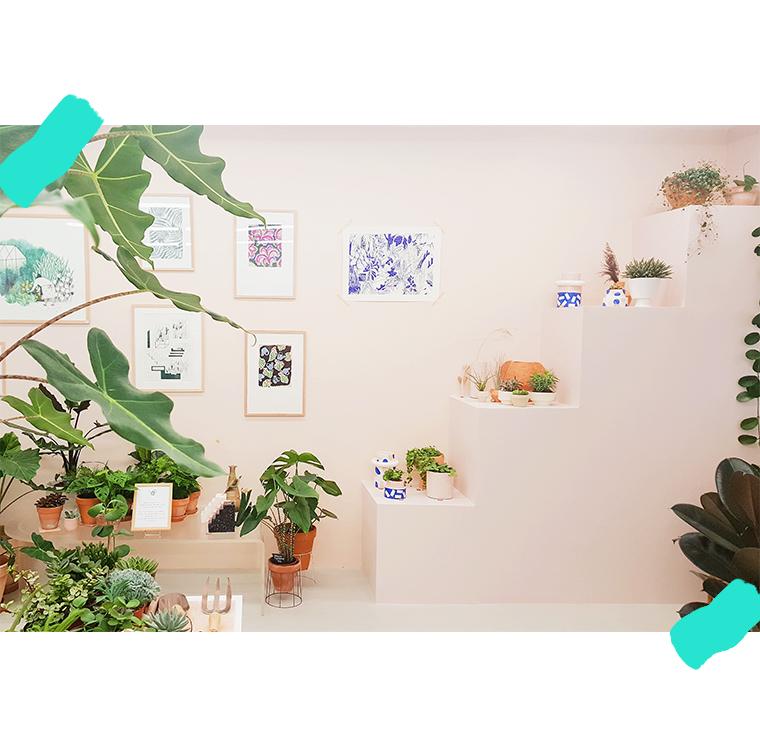 Concept store végétal