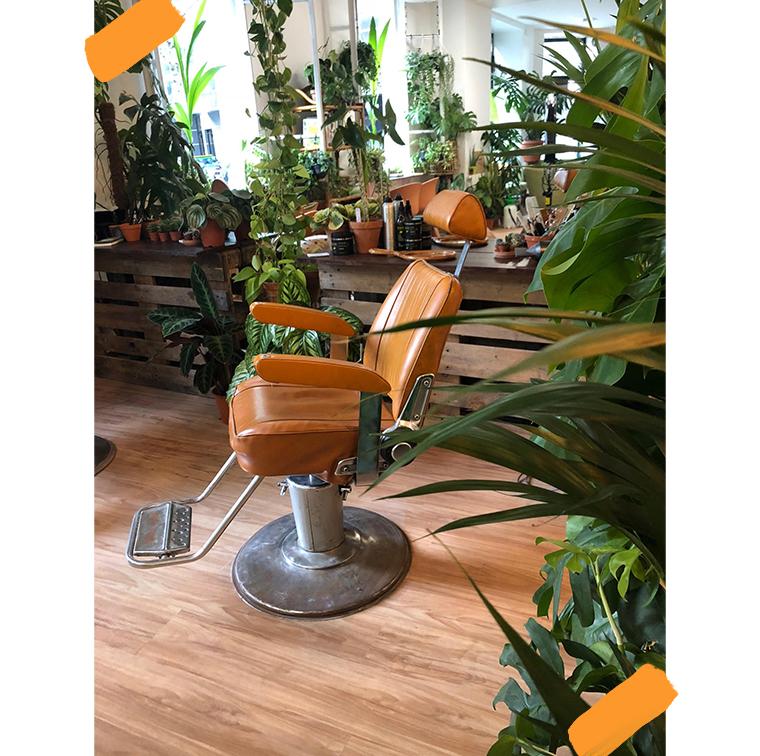 Déco plantes dans un salon de coiffure