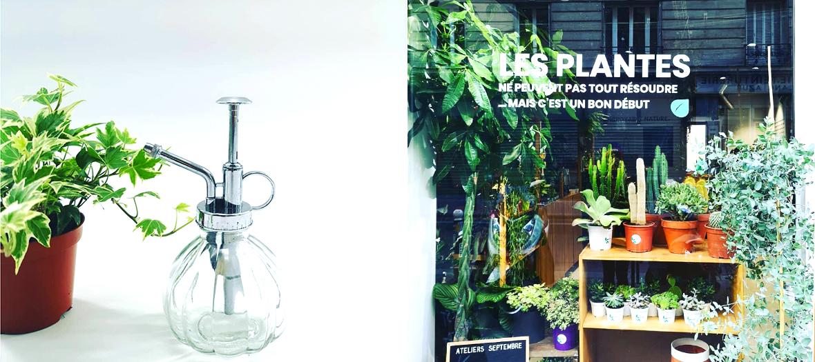 Plante dépoluante et façade du jardin urbain des plantistes Laura et Caro
