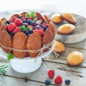 Gateau au madeleines, myrtilles et framboise de Charlotte aux fraises