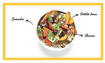 La salade d'automne veggie digeste, anti-inflammatoire, riche en magnésium et en antioxydants