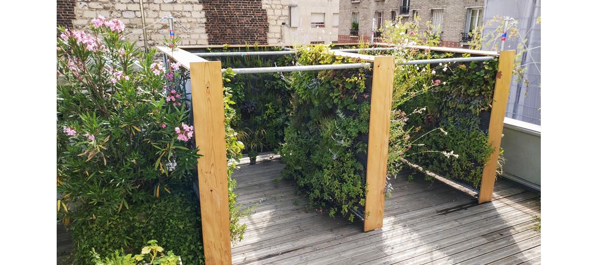 Potager vertical sur un balcon en zone urbaine