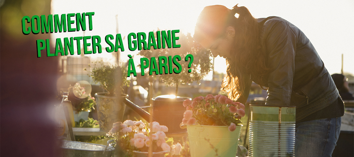 Jardin urbain à Paris