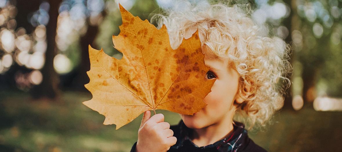 Little boy with a fall leaf