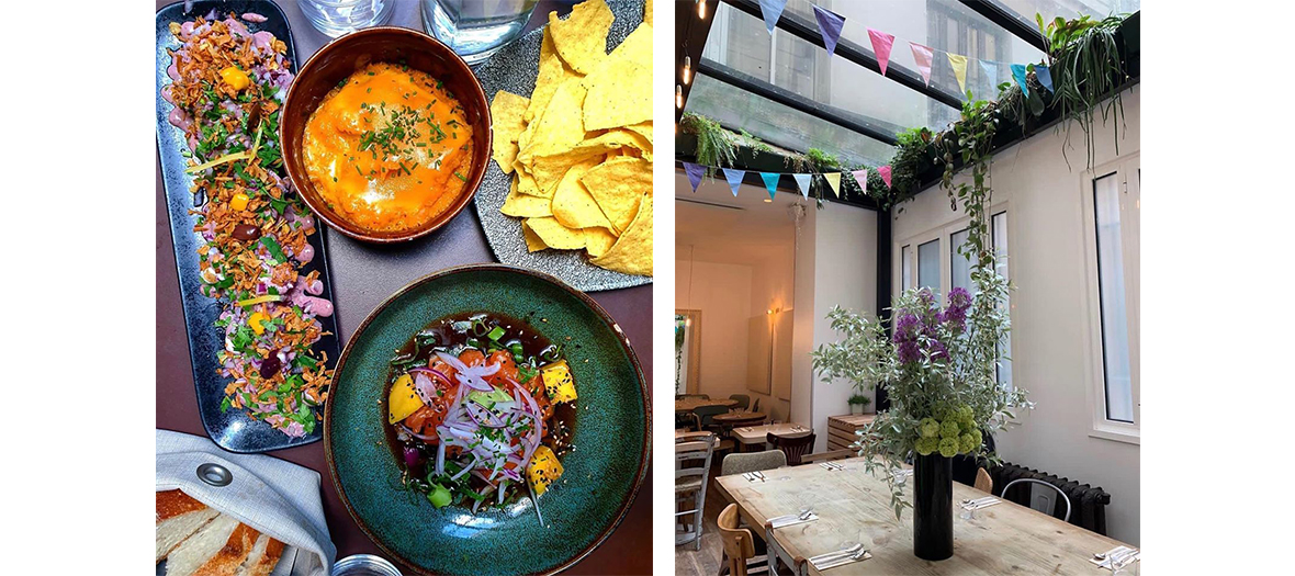 Decoration and dishes of nikkei salmon ceviche with avocado and mango cream, vegans with yellow zucchini ceviche and Espelette pepper from La Cevicheria restaurant