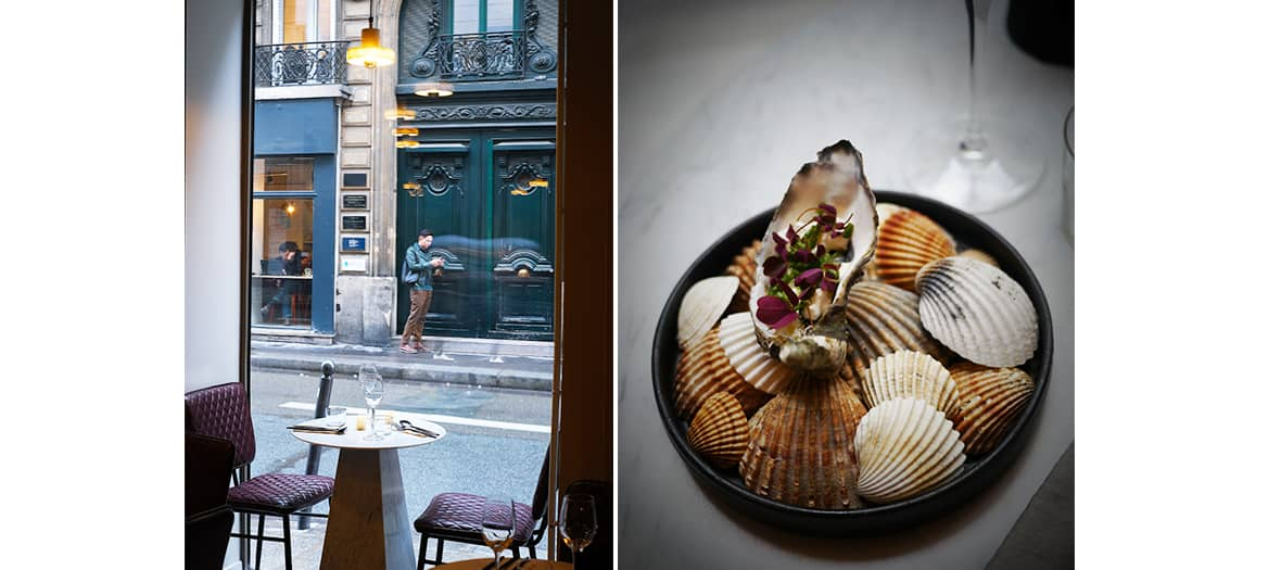 Menu in 5 steps which includes a polenta, a refreshing oyster, a savoury yellow fowl, new potato and algae and an incredible frozen parfait from Tamara restaurant.