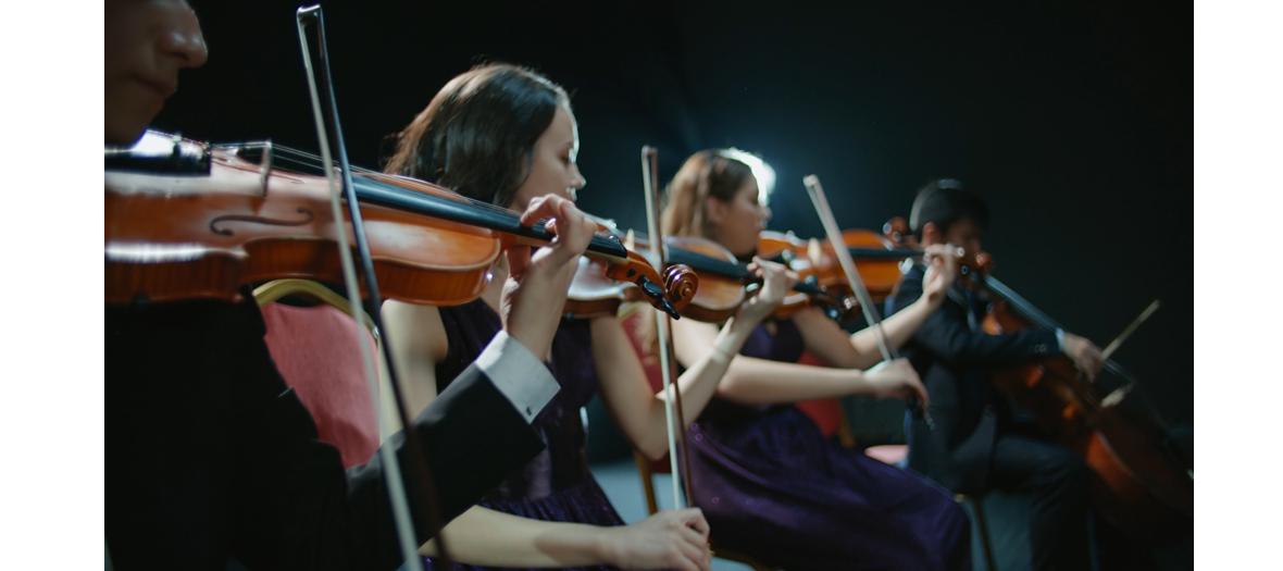 Violons dans l'orchestre Philharmonie