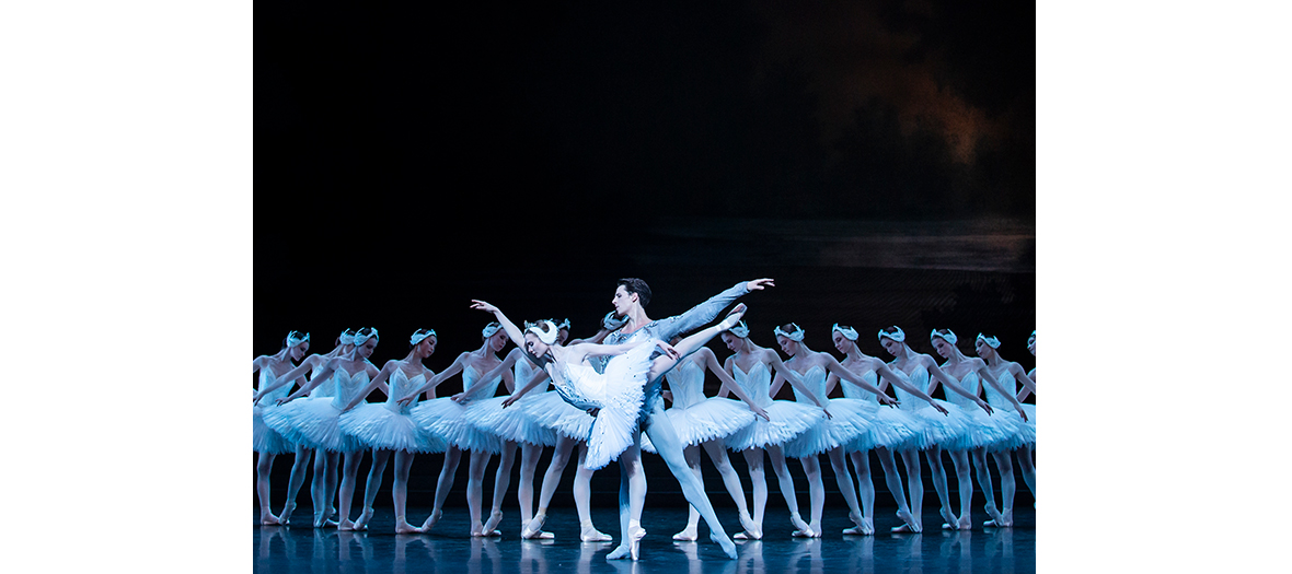 ballet Le Lac des cygnes en streaming