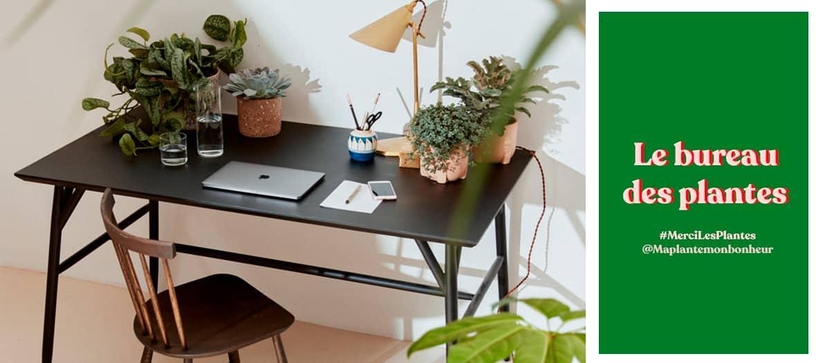 Repenser son coin bureau chez soi avec du Monstera, du calathea et du cactus de chez MercilesPlantes