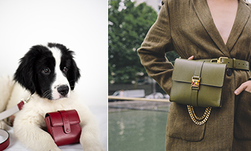 The chic leather goods of Parisiennes... and their dogs