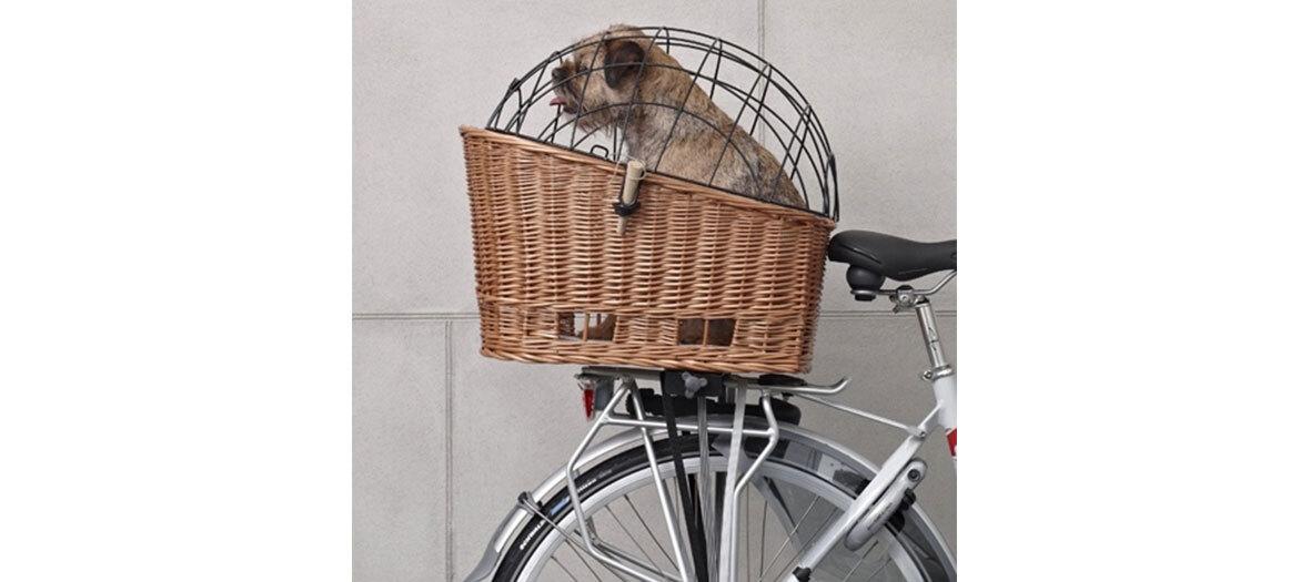 Panier arrière en osier pour chien, Basil