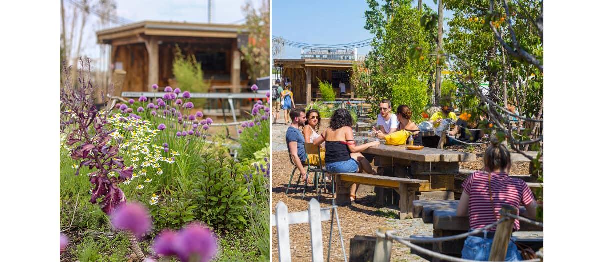 Ateliers de jardinage et d'agriculture urbaine dans le potager et la serre à la Cité Fertile à la vilette à Paris